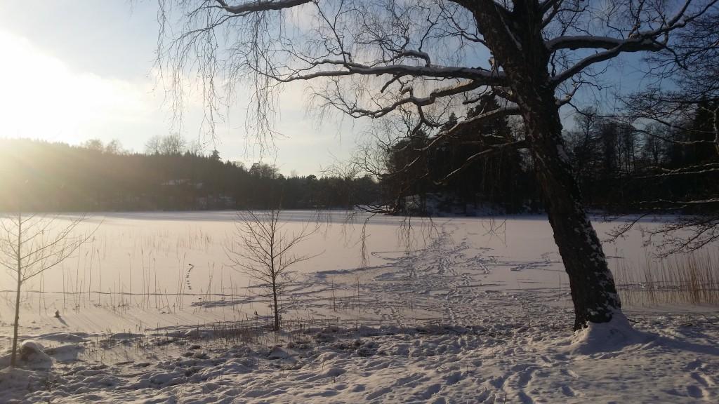 Snösjö